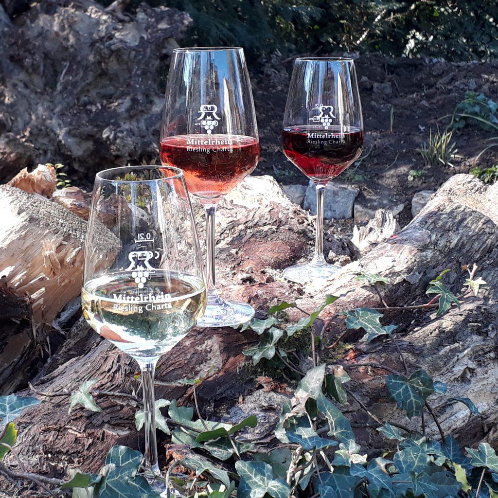 Riesling, Rosé und Spätburgunder im Glas auf einer Wurzel